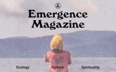 Person facing a mountain across a body of water with the title Emergence Magazine.