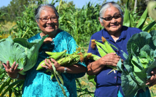 Smiling Native elders carry abundant harvests of corn and cabbage in front of a corn field.
