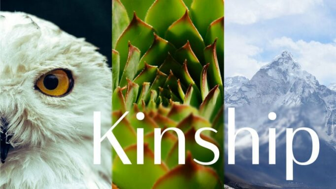 """Banner for Kinship podcast series, with a bird's eye, a plant, and a mountain with the word """"Kinship."""""""