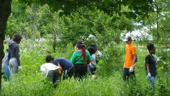 Youth explore in a verdant park