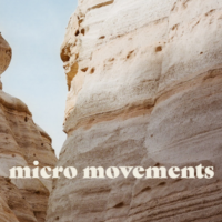 Cover of the book Micro Movements
