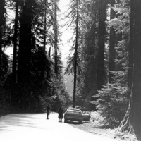 Thomas Merton on a road trip in Northern California.
