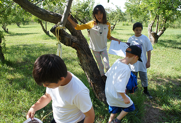 Four youth investigate during a New Mexico Acequia Association program.
