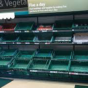 Empty shelves in the produce department of a grocery store.